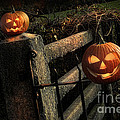 Two Halloween Pumpkins Sitting On Fence by Sandra Cunningham