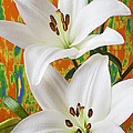 Two White Lilies by Garry Gay