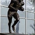 Uf Heisman Winner Tim Tebow  by Lynn Palmer