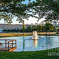 Umatilla Fountain Pond by Robert Bales