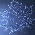 Uncertaintys Leaf by Jason Padgett