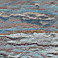 Untamed Sea 1 Print by Carol Cavalaris