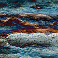 Untamed Sea 2 Print by Carol Cavalaris