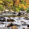 Upstream by JC Findley