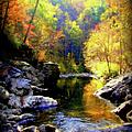 Upstream by Karen Wiles