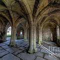 Valle Crucis Chapter House  by Adrian Evans