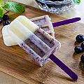 Vanilla And Blueberry Popsicles by Teri Virbickis