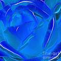 Veil Of Blue by Kaye Menner