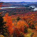 View From Mccauley Mountain II by David Patterson