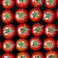 Vine Tomato Pattern by Tim Gainey