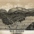Vintage Bar Harbor Map by Edward Fielding