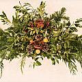 Vintage Floral Arrangement by Olivier Le Queinec