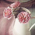 Vintage Pink by Amy Weiss