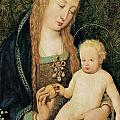 Virgin And Child With Pomegranate by Hans Holbein the Younger