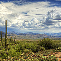 Visions Of Arizona  by Saija  Lehtonen