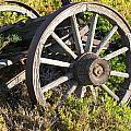 Wagon Wheels by Steven Parker