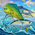 Wahoo Mahi Mahi And Tuna by Terry  Fox