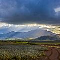 Waianae Mountains of Oahu Hawaii Print by Diane Diederich