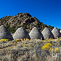 Wards Charcoal Ovens Print by Robert Bales