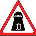 Warning Shahid Sign by Aleksey Tugolukov