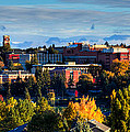 Washington State University In Autumn by David Patterson
