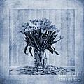 Watercolour Tulips In Blue by John Edwards