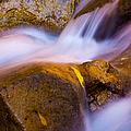 Waters Of Zion by Adam Romanowicz