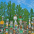 Watson Lake Sign Forest-YT Print by Ruth Hager