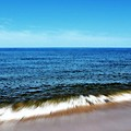 Waves In Motion by Michelle Calkins