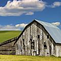 Weathered Barn Palouse by Carol Leigh