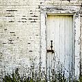 Weathered Door by Diane Diederich