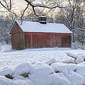 Weathering Winter by Bill Wakeley