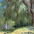 Weeping Willow Tree Print by Ylli Haruni