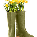 Wellington Boots by Amanda And Christopher Elwell