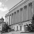 Western Kentucky University by University Icons