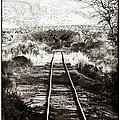 Western Tracks by John Rizzuto