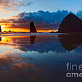 Wet Paint - Sunset In Oregon by Jamie Pham