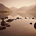Wetlands Mornings by Evelina Kremsdorf