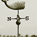 Whale Weathervane In Sepia by Ben and Raisa Gertsberg