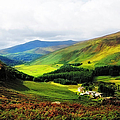 Where Is Soul Flying. Wicklow Mountains. Ireland by Jenny Rainbow