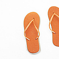 Where On Earth Is Spring - My Orange Flip Flops Are Waiting by Andee Design