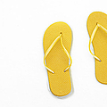 Where On Earth Is Spring - My Yellow Flip Flops Are Waiting by Andee Design