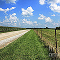 Where The Road May Take You by Cathy  Beharriell