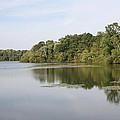 White Heron Lake Poconos Pa II by John Telfer