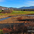 White Mountains Scenic Vista by Catherine Reusch  Daley