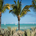 White Sails. Mauritius by Jenny Rainbow