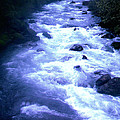 White Water by J D Owen