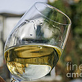 White Wine Swirling In A Glass by Patricia Hofmeester