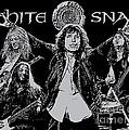 Whitesnake No.01 by Caio Caldas