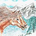 Wild And Free by Shaunna Juuti